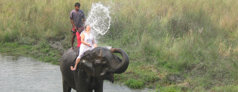 Nepal Jungle Safari Tour